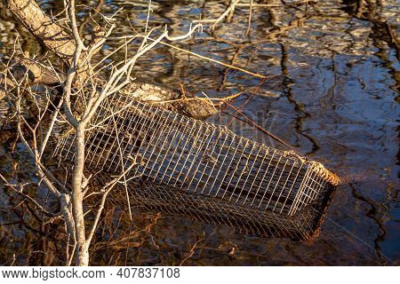 Illegal Wildlife Trap, Used To Catch And Trap Otters, Mink And Crayfish, Washed Up Along The River B