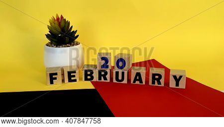February 20 On Wooden Cubes On A Multicolored Yellow Red Black Background.calendar For February .