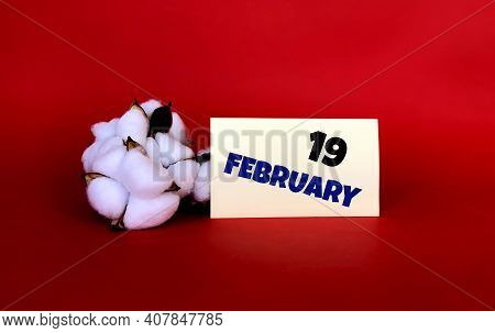 February 19 On A Yellow Sticker.next To It Is Cotton On A Red Background .last Month Of Winter.calen
