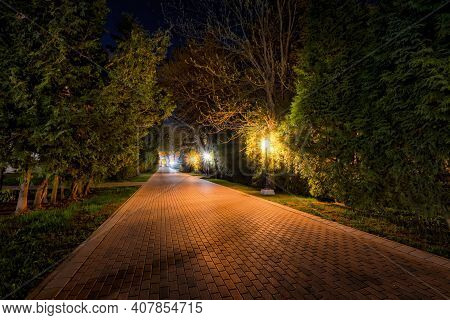 City Night Park In Early Summer Or Spring With Pavement, Lanterns, Young Green Leaves And Trees.