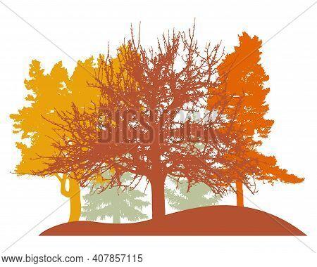 Autumn Woodland, Silhouette Of Oak, Linden, Poplar, Spruce Trees. Beautiful Nature, Landscape. Vecto