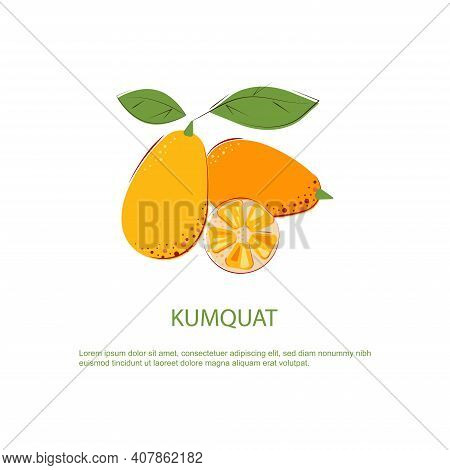 Orange Juice Kumquat With Green Leafs. Composition Of Whole Fruits And Cut One