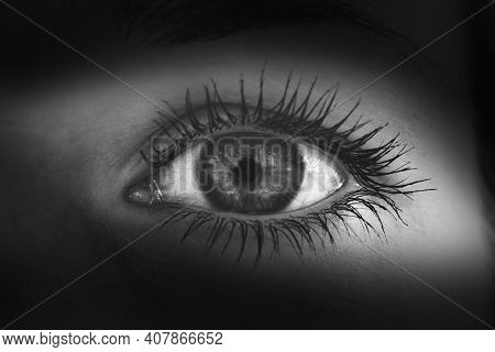 Black And White Photography Of Beautiful Woman Eye