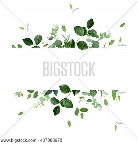 Herbal Horizontal Vector Frame. Hand Painted Plants, Branches, Leaves On A White Background. Greener