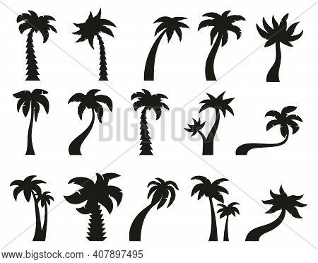 Palm Trees Silhouettes. Tropical Botany Palm Tree, Hawaiian Coconut Palm Vintage Silhouettes. Exotic