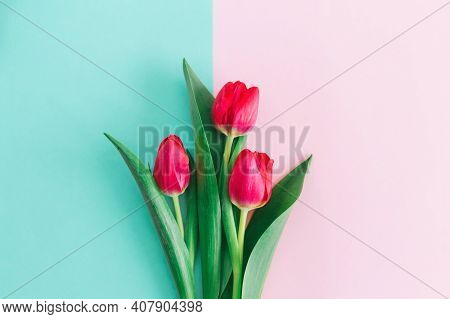 Tender Pink Tulips On Pastel Pink And Turquoise Background. Greeting Card For Women's Day. Flat Lay.
