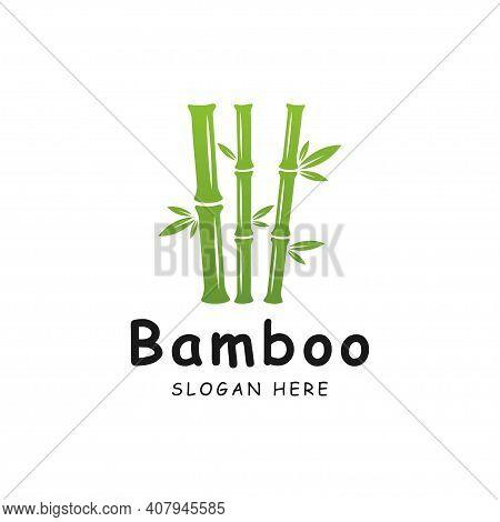 Bamboo Logo Template. Green Bamboo Trees Vector Design. Bamboo Stem Logotype