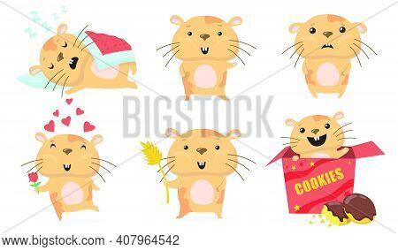 Adorable Hamster Set. Cute Funny Cartoon Hamster Sleeping, Waving Hello, Giving Flower In Love, Eati