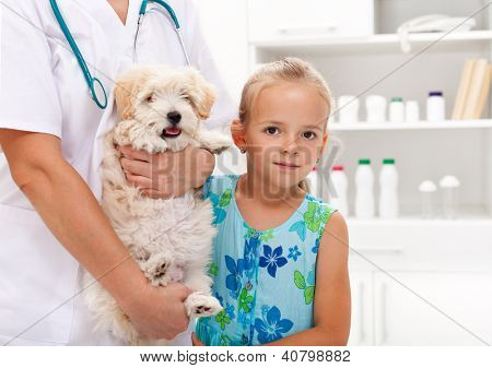 poster of Taking my doggy to the veterinary - child with her pet