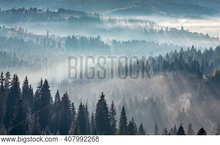 The Air. Light And Shadows In Mist. First Rays Of Sun Through Fog And Trees On Slopes. Morning Autum