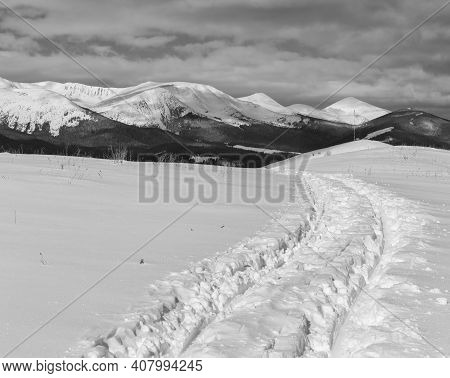Grayscale. Sledge Trace And Footprints On Winter Mountain Hill Top And Snow Covered Alp Chornohora R