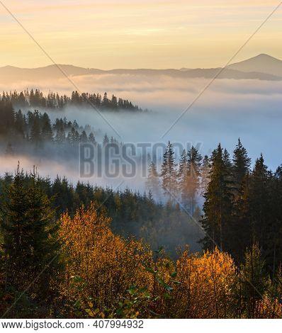 Morning Fog On The Slopes Of The Carpathian Mountains, Ukraine.