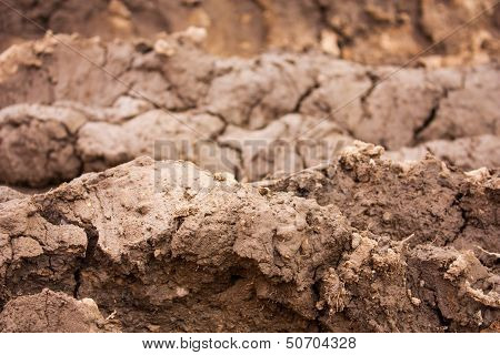 Layers Of Mud
