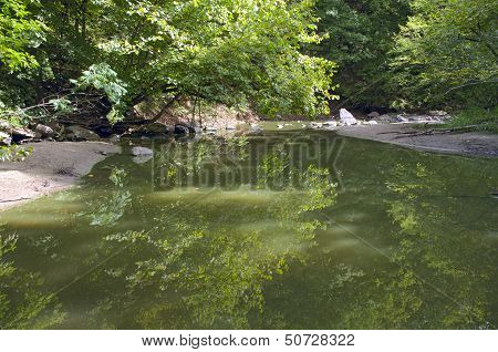 Minneopa Creek And Forest