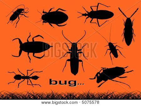 Black silhouette of various bugs on the orange background. poster