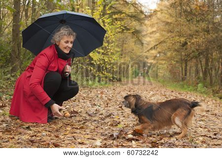 Woman With Umbrella Playing With Her Dog