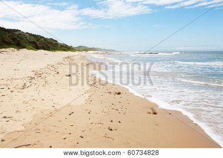 Coastline With Lush Vegetation And Waves