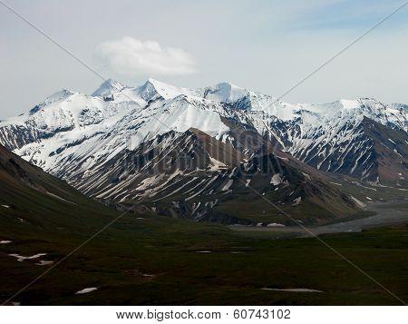Denali National Parks