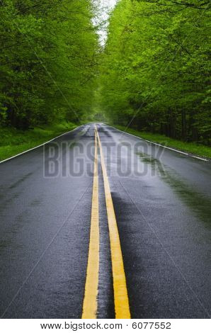 straight wet road