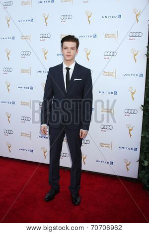 LOS ANGELES - AUG 23:  Cameron Monaghan at the Television Academy's Perfomers Nominee Reception at Pacific Design Center on August 23, 2014 in West Hollywood, CA