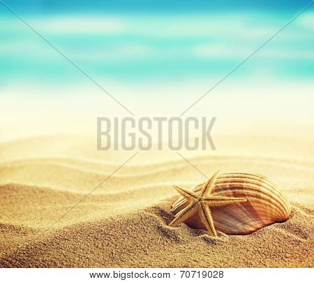 Summer concept of sandy beach, shells and starfish. Instagram vintage effect