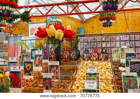 Tulip Bulbs On The Famous Floating Flower Market In Amsterdam.