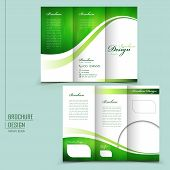 modern style tri-fold template for business advertising brochure in green poster