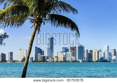 Miami Downtown skyline in daytime with Biscayne Bay. poster