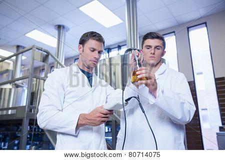Two men in lab coat testing beer in the beaker in the factory