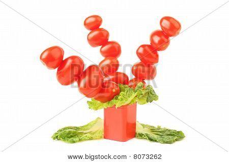 Creative Tomatoes Tree