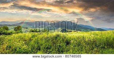 Meadow With Flowers In Mountains At Sunrise