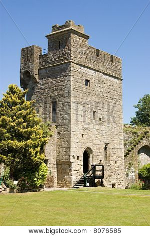 Tower, Caldicot Castle