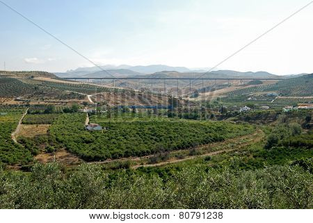 Local and AVE (high speed) train bridges in countryside near Alora Malaga Province Andalucia Spain Western Europe. poster