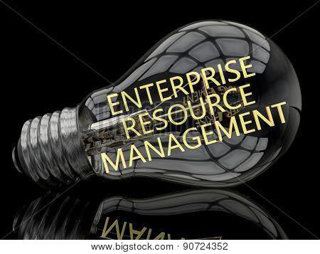 Enterprise Resource Management