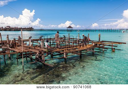 JUNE 27, 2006 - SABAH, MALAYSIA: Construction workers lay the foundation frame on stilts planted in to the shallow sea for the construction of a wooden building to be make a tourist resort chalet.