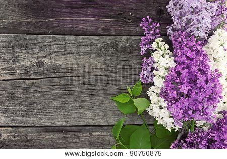 Lilac Blossom On Rustic Wooden Background With Empty Space For Greeting Message. Mother's Day And Sp