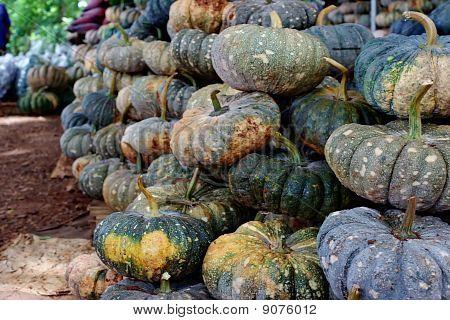 Thai pumpkin.
