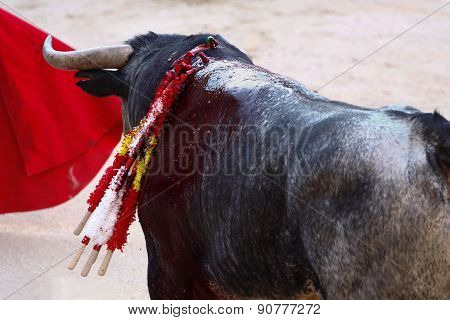 Traditional corrida - bullfighting in Spain.