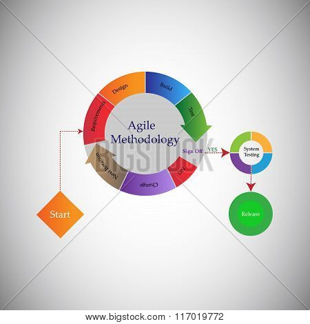 Concept of Software Agile Methodology