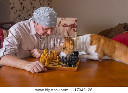 Dog desperately trying to help master with chess game moving the right chess-men to right direction