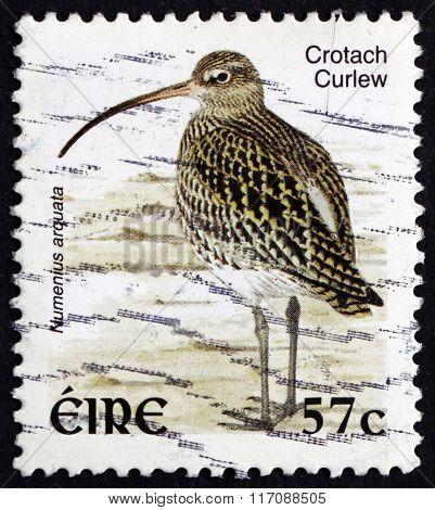 Postage Stamp Ireland 2002 Eurasian Curlew, Wader Bird