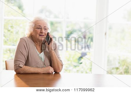 Smiling elderly woman phone calling at home