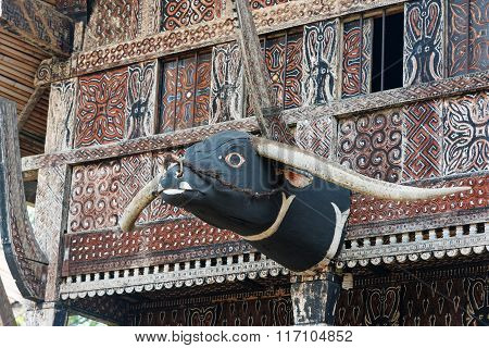 Carved Buffalo Head Decoration On Tongkonan Traditional House