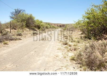 Dirt Road On Farm In Arid Region