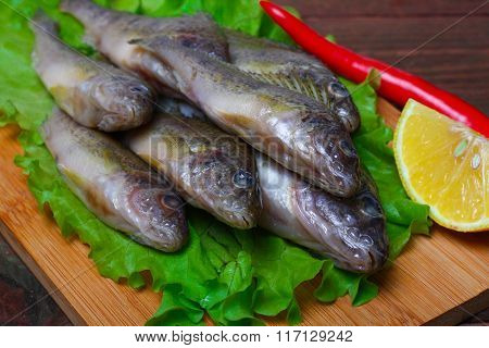 raw redfish ruff fish on the kitchen table with vegetables and lemon