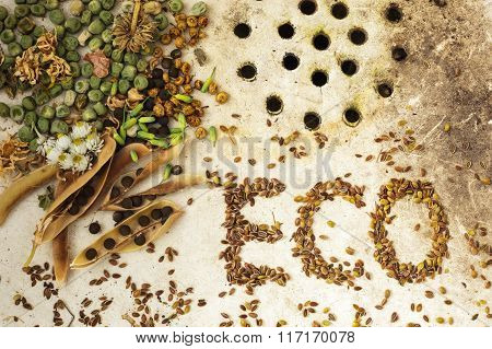 The Background With The Seeds On The Surface Of Old Sink: Ecological Products