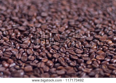 Brown Roasted Arabica Coffee