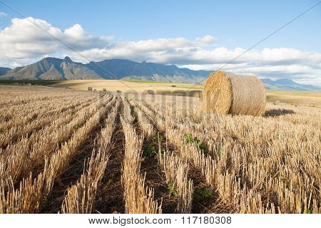 Hay Bales Lying In A Field Against Mountain Backdrop