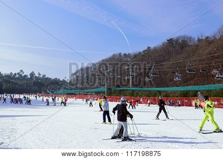 Daemyung Vivaldi Park ski resorts, attractions, famous and popular in Korea.