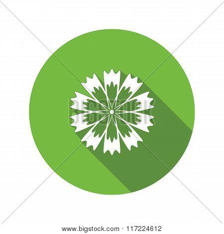 Cornflower, blue poppy, centaury, knapweed flower icons. Spring floral, medicinal herbs symbol. Roun